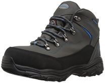 Skechers for Work Women's D Lite Amasa Work Boot